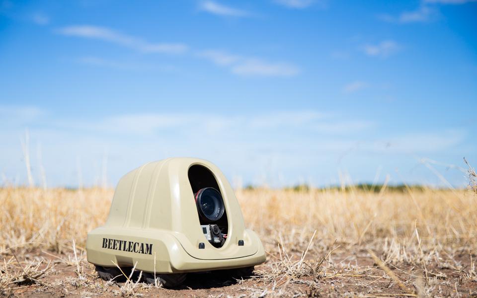 BeetleCam
