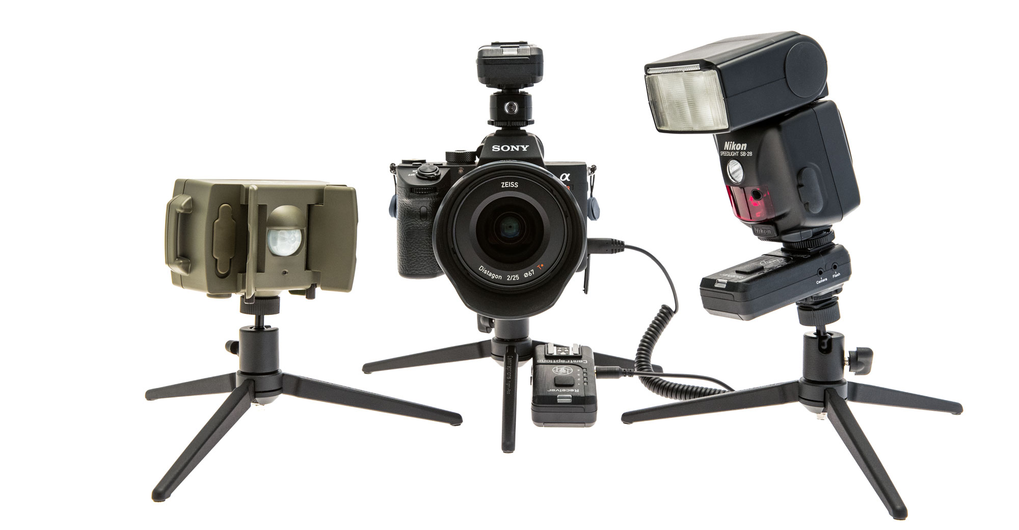 Camera Traps - Camtraptions