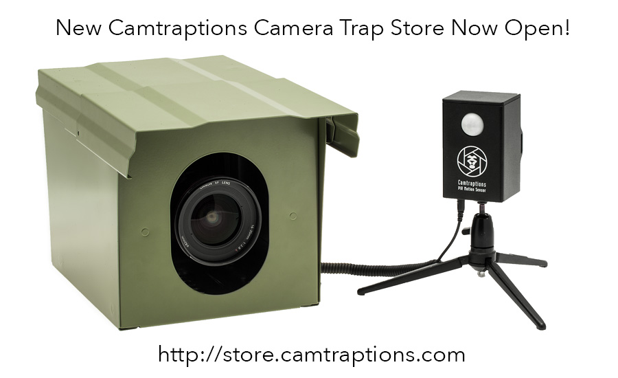 camera-trap-store