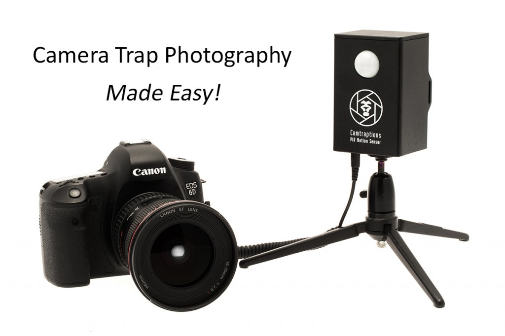 camera-trap-photography