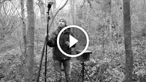 bonus-video